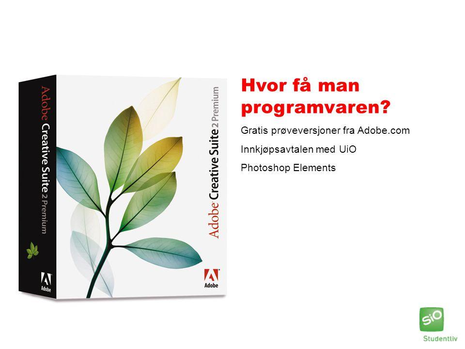Hvor få man programvaren? Gratis prøveversjoner fra Adobe.com Innkjøpsavtalen med UiO Photoshop Elements