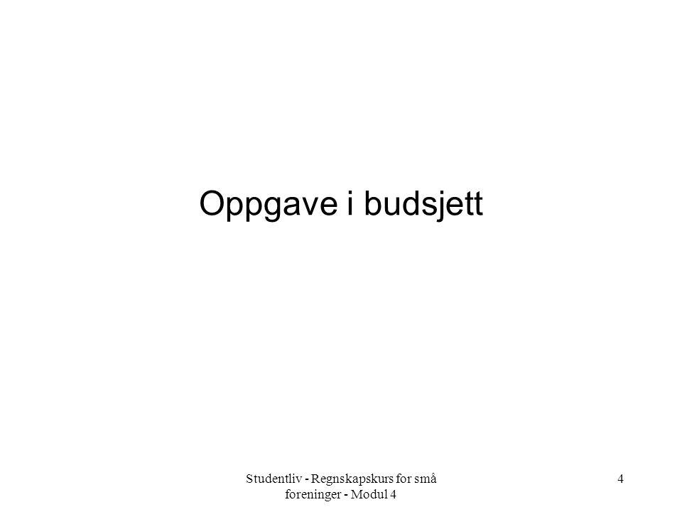 4 Oppgave i budsjett