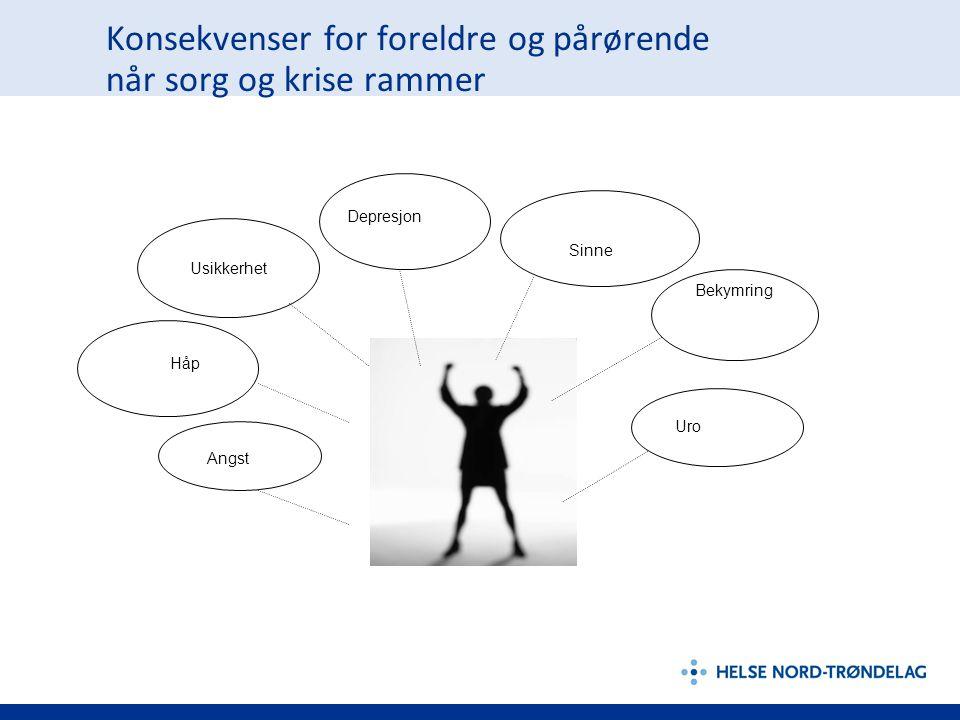 Opplæringsprogram for barneansvarlige i HNT – nasjonalt pilotprosjekt Samling 1 – 29.-30.
