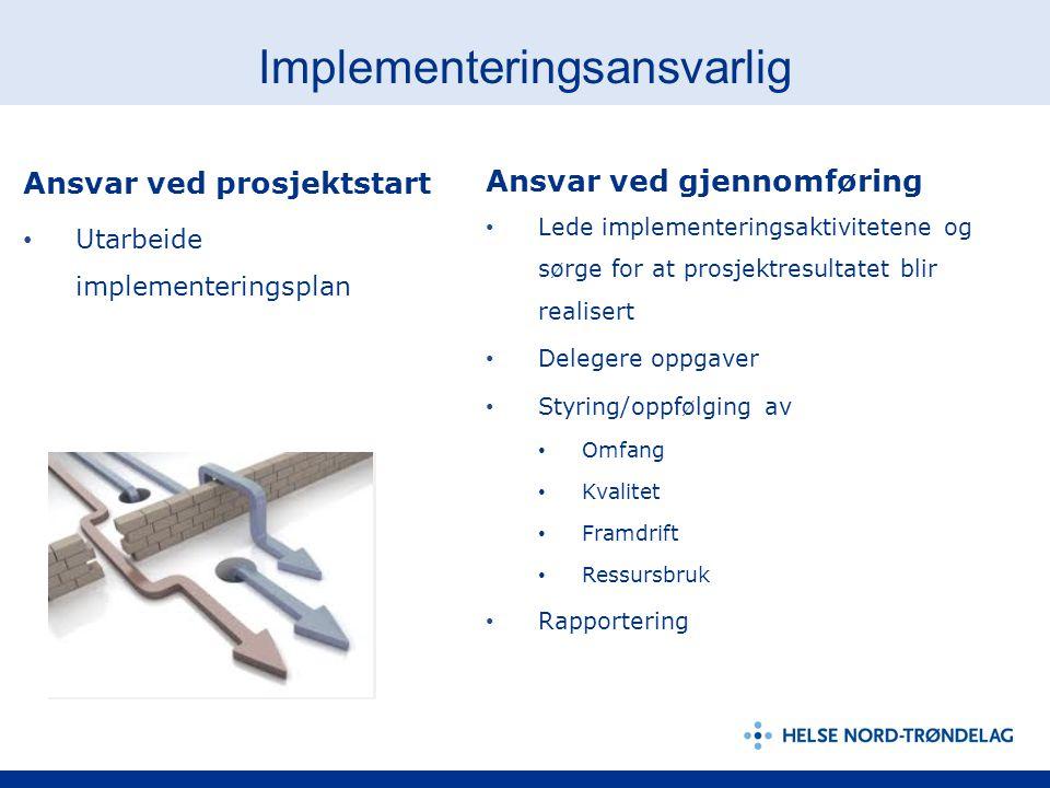 Implementeringsansvarlig Ansvar ved prosjektstart Utarbeide implementeringsplan Ansvar ved gjennomføring Lede implementeringsaktivitetene og sørge for