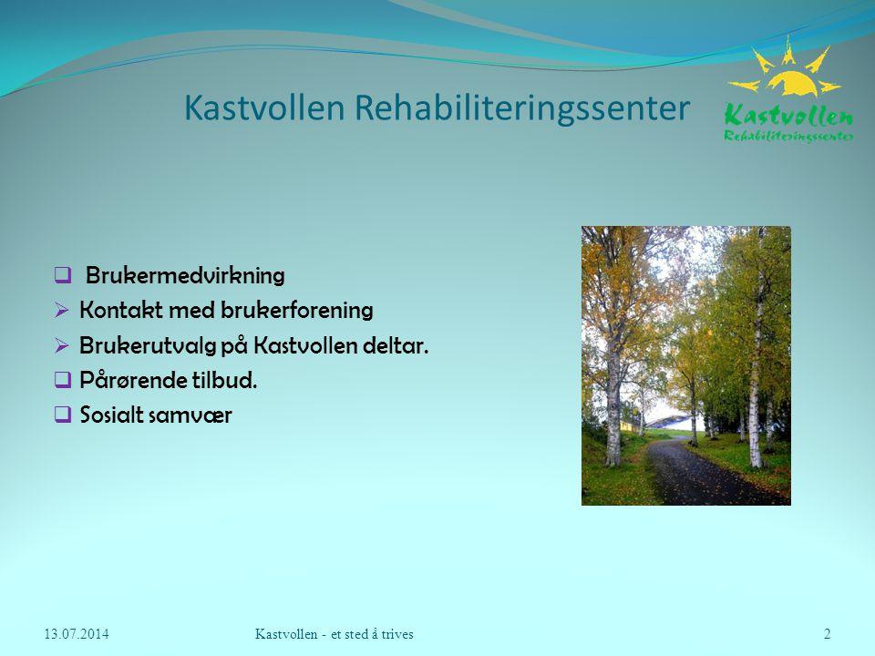 Kastvollen Rehabiliteringssenter  Gruppe på 11 personer  Innkomstsamtale  Tverrfaglig samtale  rehabiliteringsplan  Felles info fra Fysio- og ergoterapeut.