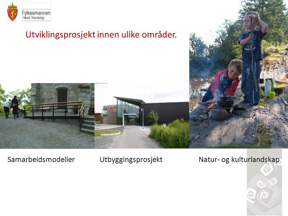 Utviklingsprosjekt innen ulike områder.