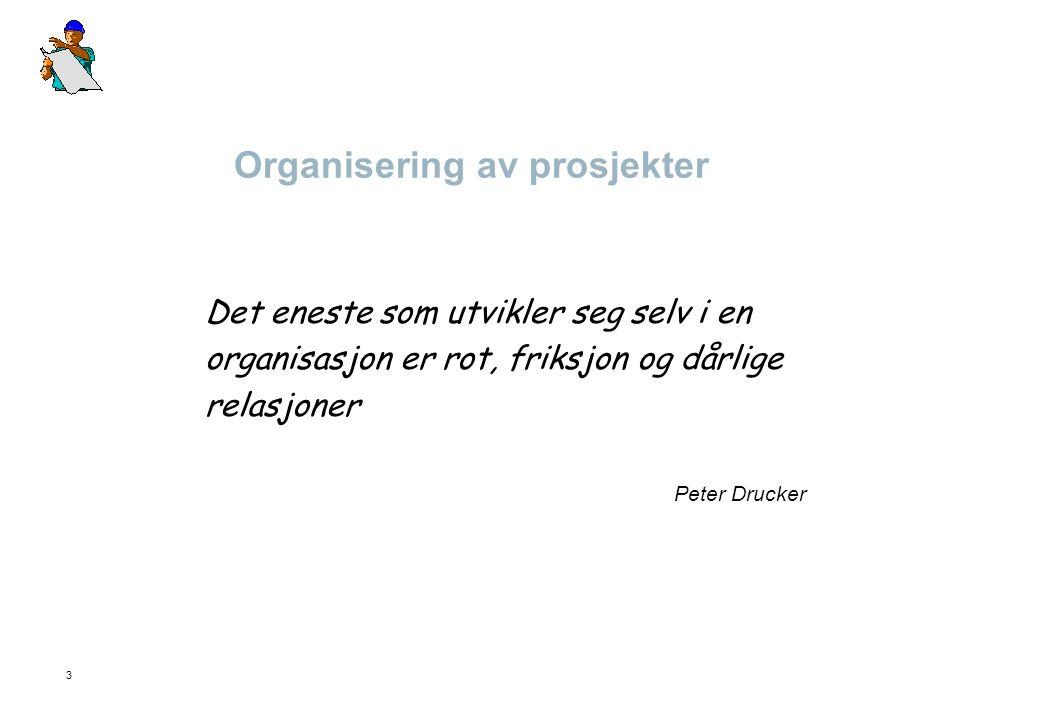 3 Organisering av prosjekter Det eneste som utvikler seg selv i en organisasjon er rot, friksjon og dårlige relasjoner Peter Drucker