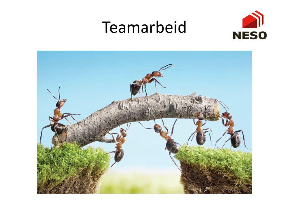 Teamarbeid