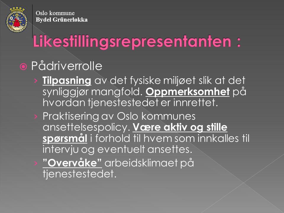 Oslo kommune Bydel Grünerløkka  Pådriverrolle › Tilpasning av det fysiske miljøet slik at det synliggjør mangfold.