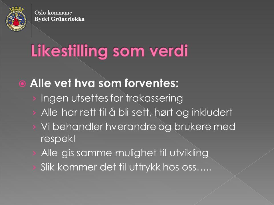 Oslo kommune Bydel Grünerløkka › Føringer/arbeidsgiverpolitikk › UKUL › Likestillingsrepresentanter › Lokale Trekanter › Ansvarsplassering › Rapportering