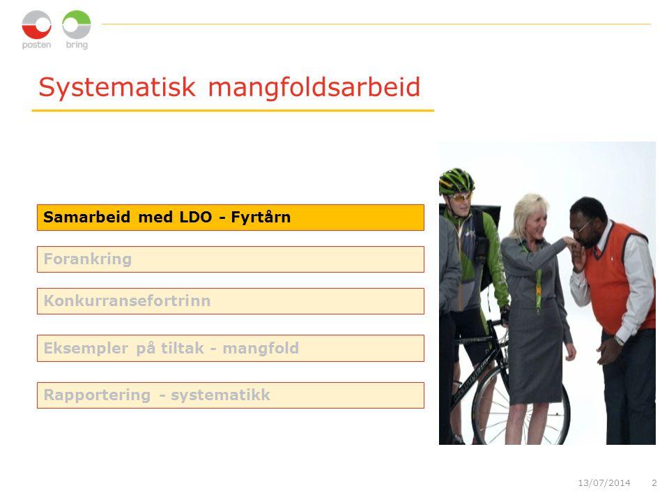 Systematisk mangfoldsarbeid 13/07/20142 Samarbeid med LDO - Fyrtårn Forankring Konkurransefortrinn Eksempler på tiltak - mangfold Rapportering - systematikk