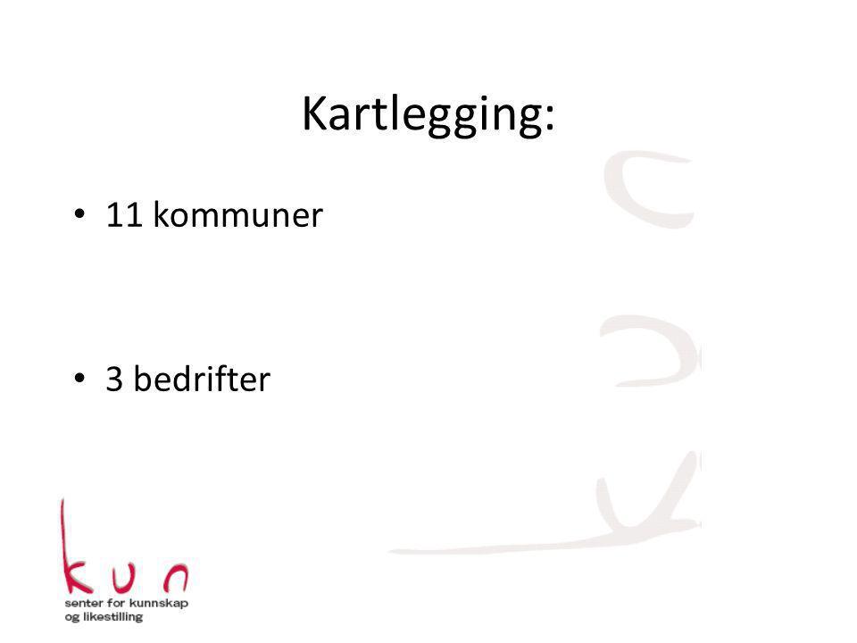 Kartlegging: 11 kommuner 3 bedrifter