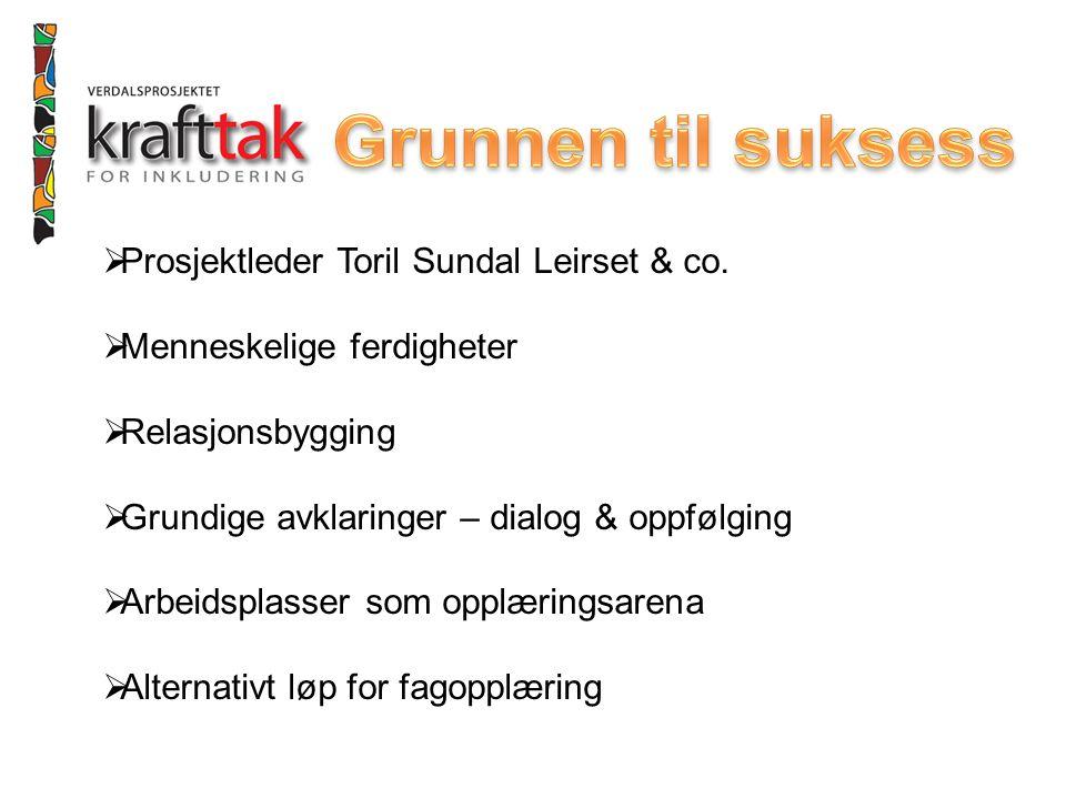  Prosjektleder Toril Sundal Leirset & co.  Menneskelige ferdigheter  Relasjonsbygging  Grundige avklaringer – dialog & oppfølging  Arbeidsplasser