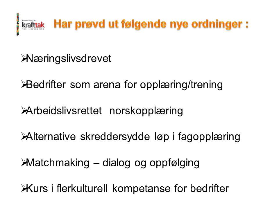  Næringslivsdrevet  Bedrifter som arena for opplæring/trening  Arbeidslivsrettet norskopplæring  Alternative skreddersydde løp i fagopplæring  Ma