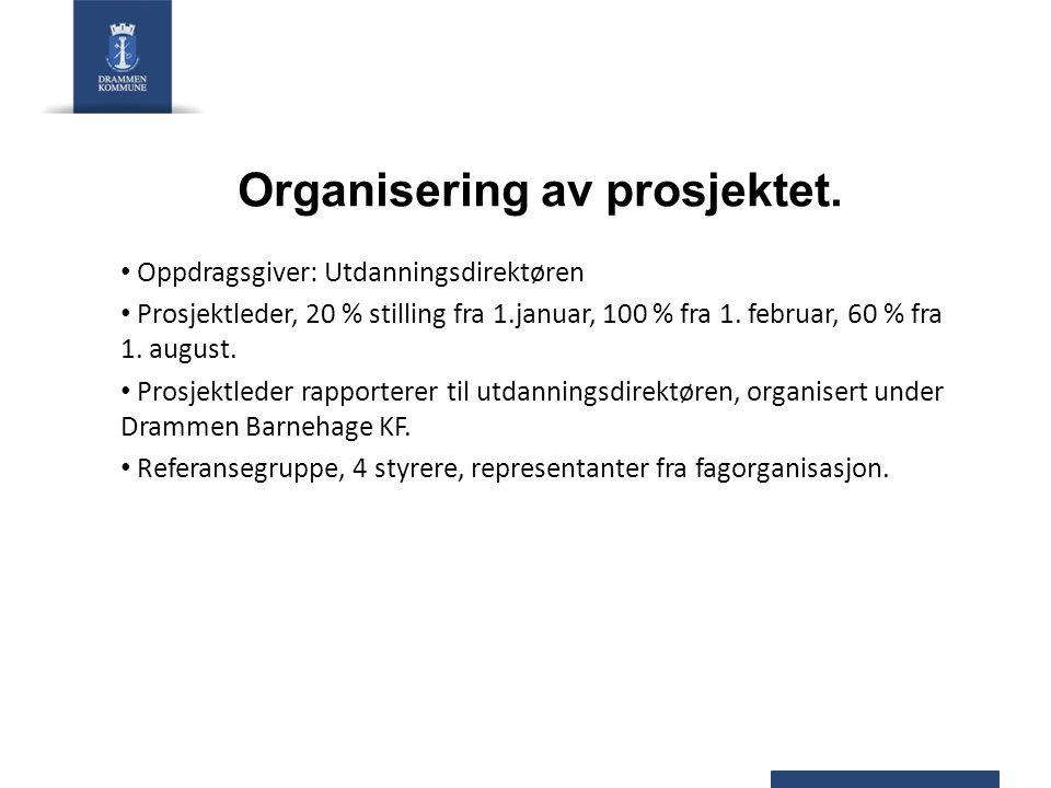 Organisering av prosjektet. Oppdragsgiver: Utdanningsdirektøren Prosjektleder, 20 % stilling fra 1.januar, 100 % fra 1. februar, 60 % fra 1. august. P