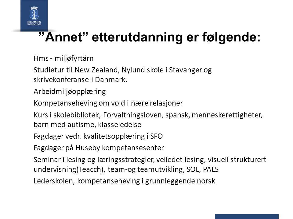 Annet etterutdanning er følgende: Hms - miljøfyrtårn Studietur til New Zealand, Nylund skole i Stavanger og skrivekonferanse i Danmark.