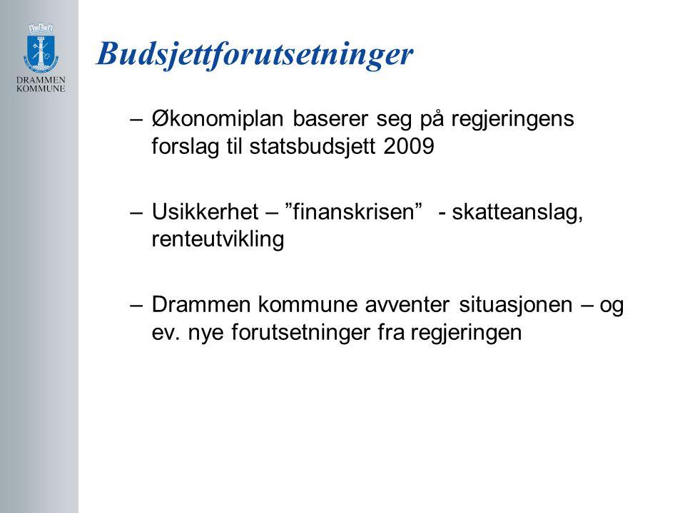 Budsjettforutsetninger –Økonomiplan baserer seg på regjeringens forslag til statsbudsjett 2009 –Usikkerhet – finanskrisen - skatteanslag, renteutvikling –Drammen kommune avventer situasjonen – og ev.