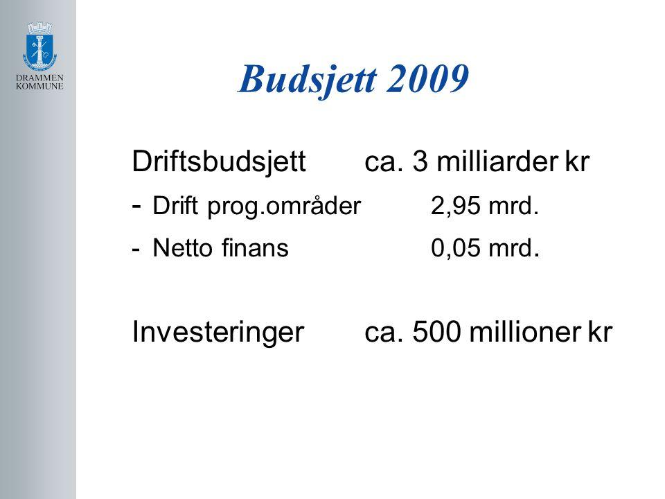 Budsjett 2009 Driftsbudsjett ca. 3 milliarder kr - Drift prog.områder 2,95 mrd.