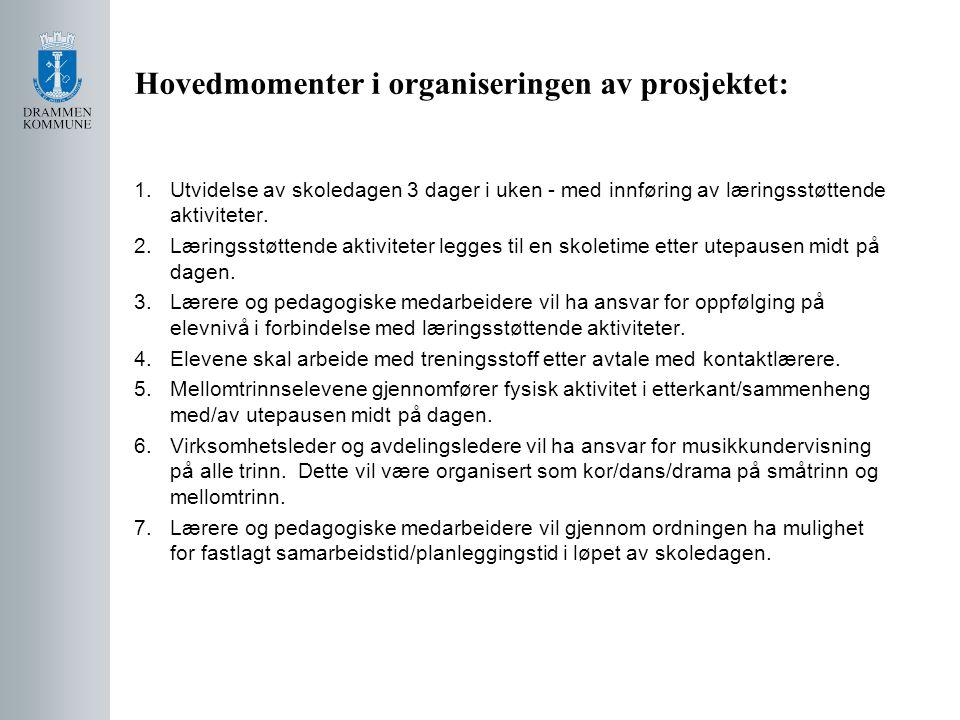 Prosjektvurdering: Skolen evaluerer prosjektet primo november 2010.