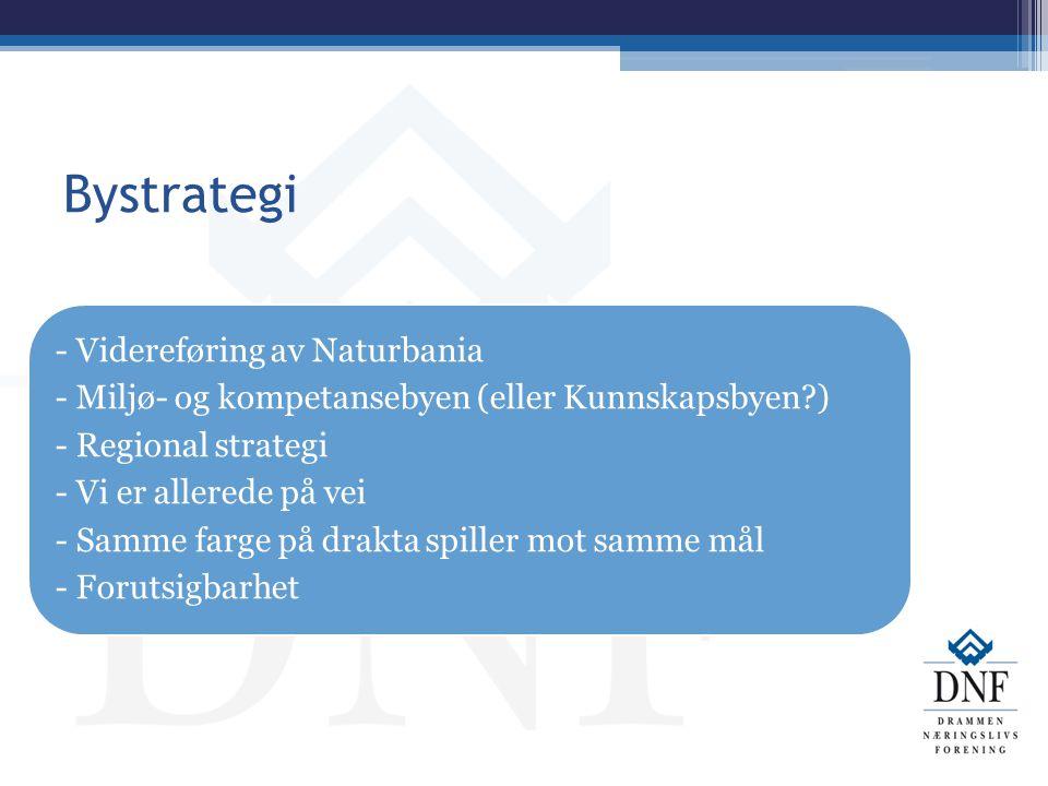 Bystrategi - Videreføring av Naturbania - Miljø- og kompetansebyen (eller Kunnskapsbyen?) - Regional strategi - Vi er allerede på vei - Samme farge på