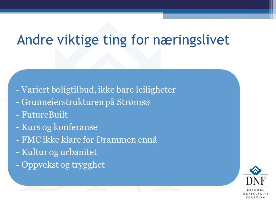 Andre viktige ting for næringslivet - Variert boligtilbud, ikke bare leiligheter - Grunneierstrukturen på Strømsø - FutureBuilt - Kurs og konferanse -