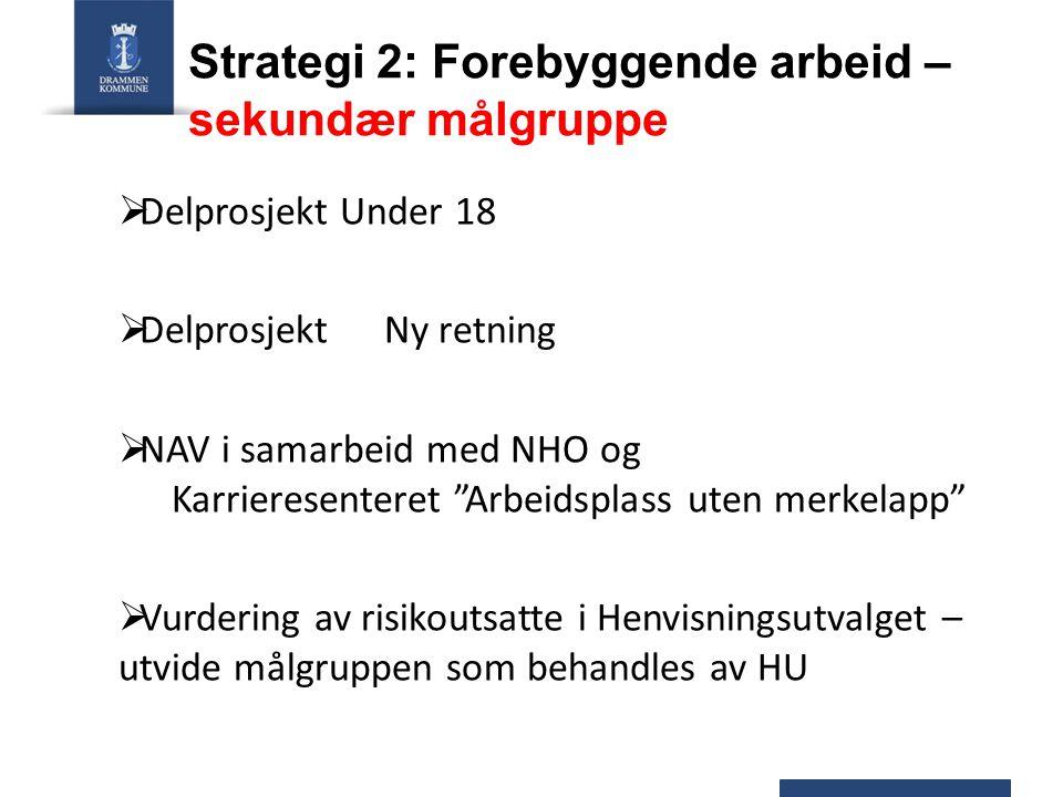 """Strategi 2: Forebyggende arbeid – sekundær målgruppe  Delprosjekt Under 18  Delprosjekt Ny retning  NAV i samarbeid med NHO og Karrieresenteret """"Ar"""