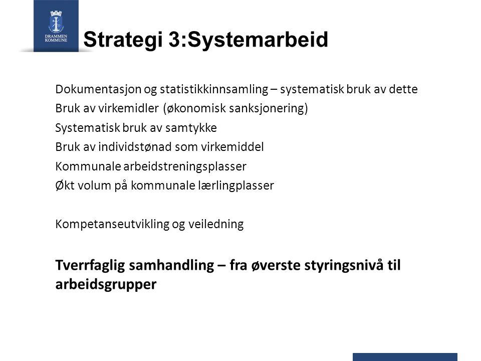 Strategi 3:Systemarbeid Dokumentasjon og statistikkinnsamling – systematisk bruk av dette Bruk av virkemidler (økonomisk sanksjonering) Systematisk br