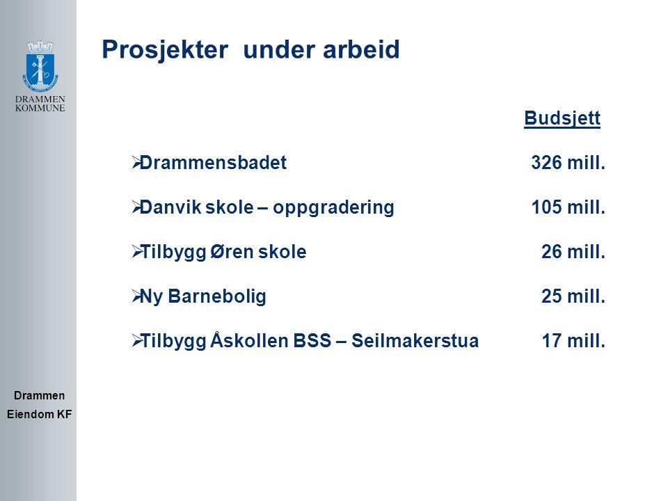 Utviklingsprosjekter : Drammen Eiendom KF  Fremtidig utnyttelse av tidl.