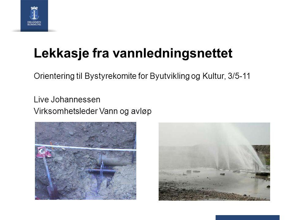Lekkasje fra vannledningsnettet Orientering til Bystyrekomite for Byutvikling og Kultur, 3/5-11 Live Johannessen Virksomhetsleder Vann og avløp