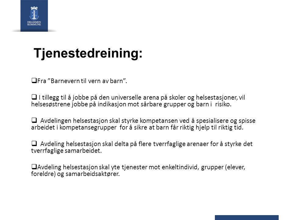 Helsetilbudet til ungdomsgruppen i Drammen i dag - Helsesøstertjeneste på Ungdomskole - Helsesøstertjeneste i Videregående - Helsestasjon for Ungdom Dekkes av 3,8 årsverk Vi må jobbe smartere