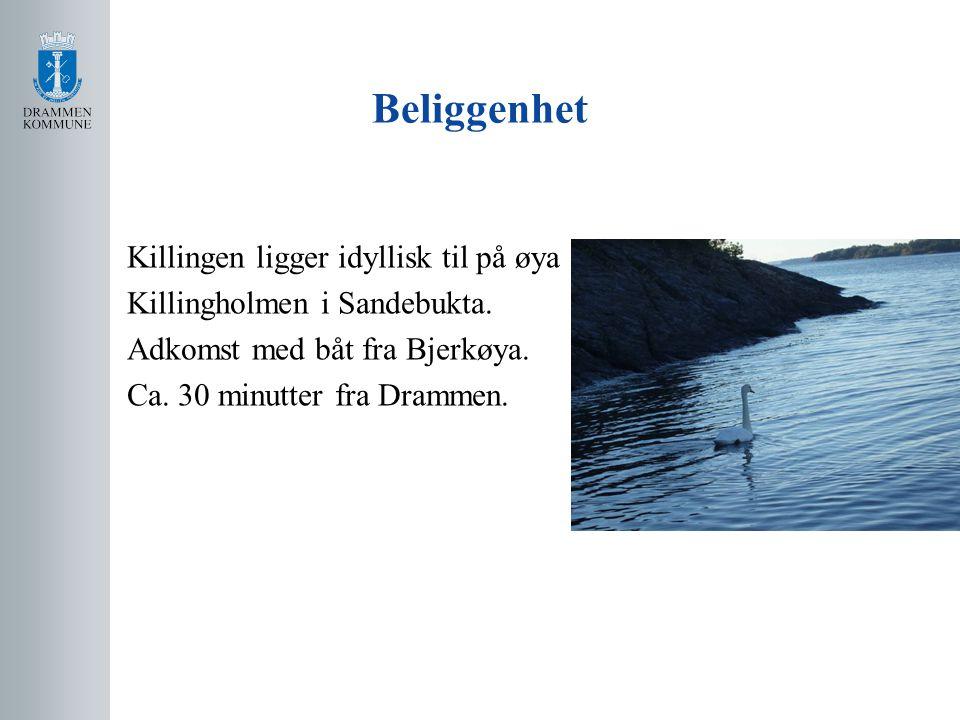 Bebyggelse Eiendommen, en tredel av øya, er på 61 mål.