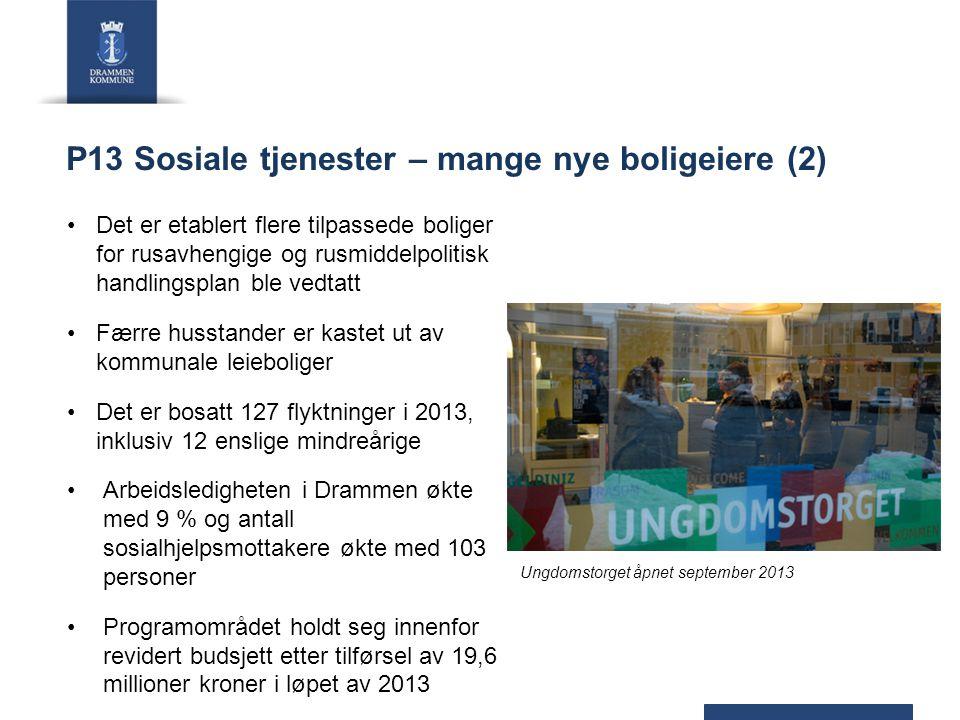 P13 Sosiale tjenester – mange nye boligeiere (2) Det er etablert flere tilpassede boliger for rusavhengige og rusmiddelpolitisk handlingsplan ble vedt