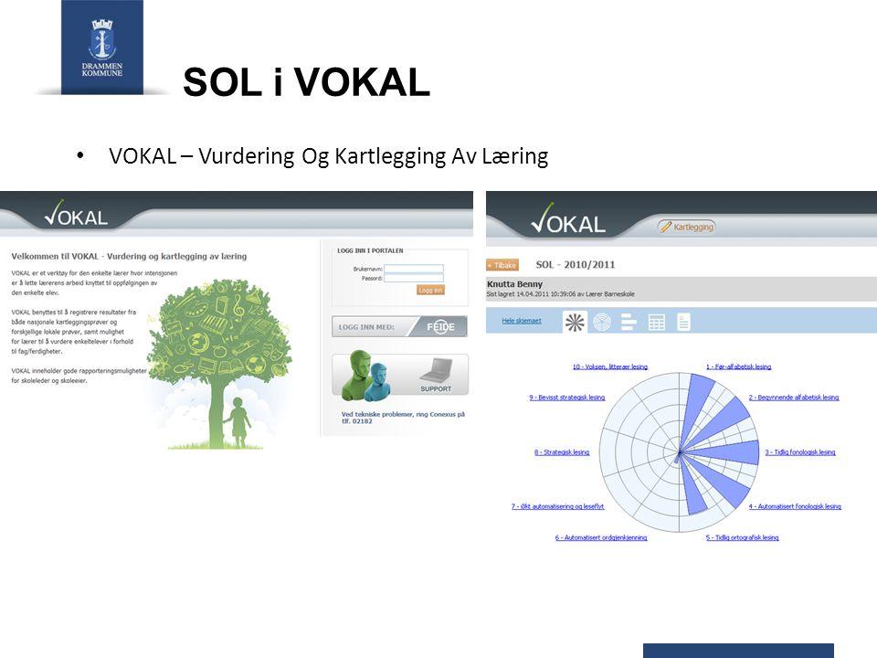 SOL i VOKAL VOKAL – Vurdering Og Kartlegging Av Læring