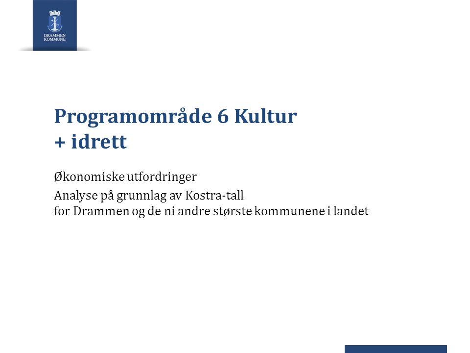 Programområde 6 Kultur + idrett Økonomiske utfordringer Analyse på grunnlag av Kostra-tall for Drammen og de ni andre største kommunene i landet