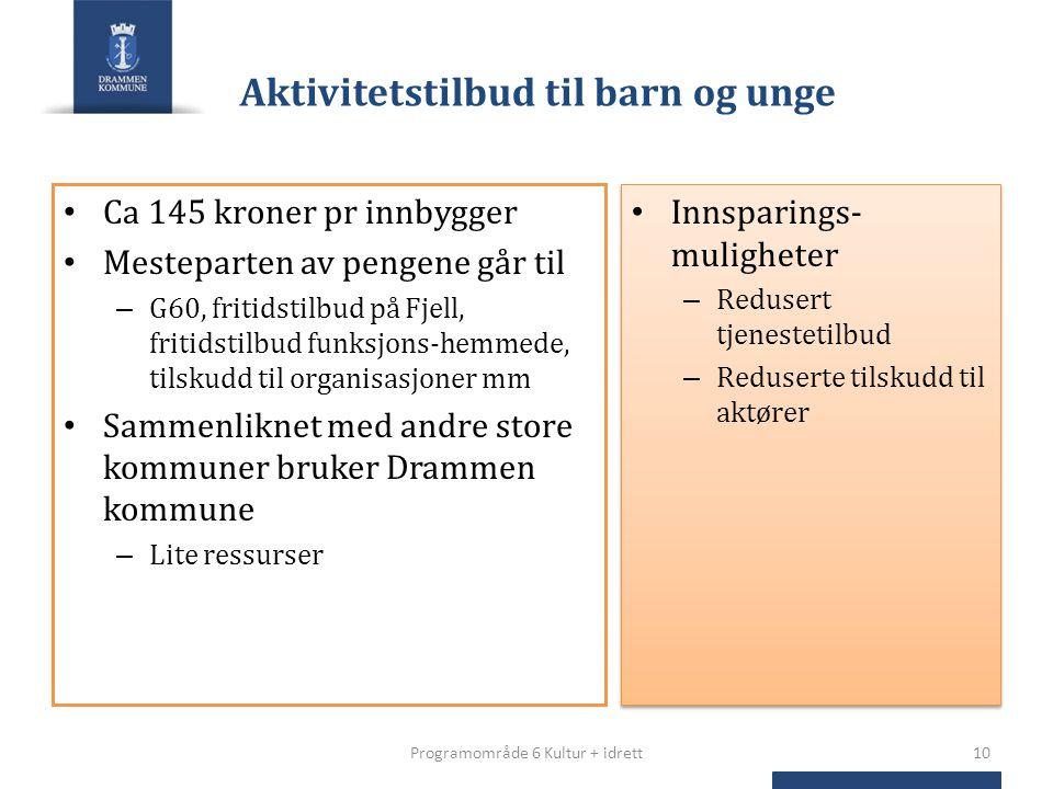 Aktivitetstilbud til barn og unge Ca 145 kroner pr innbygger Mesteparten av pengene går til – G60, fritidstilbud på Fjell, fritidstilbud funksjons-hem