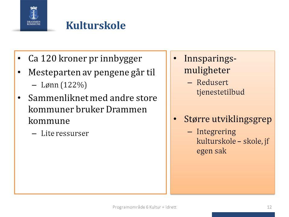 Kulturskole Ca 120 kroner pr innbygger Mesteparten av pengene går til – Lønn (122%) Sammenliknet med andre store kommuner bruker Drammen kommune – Lit