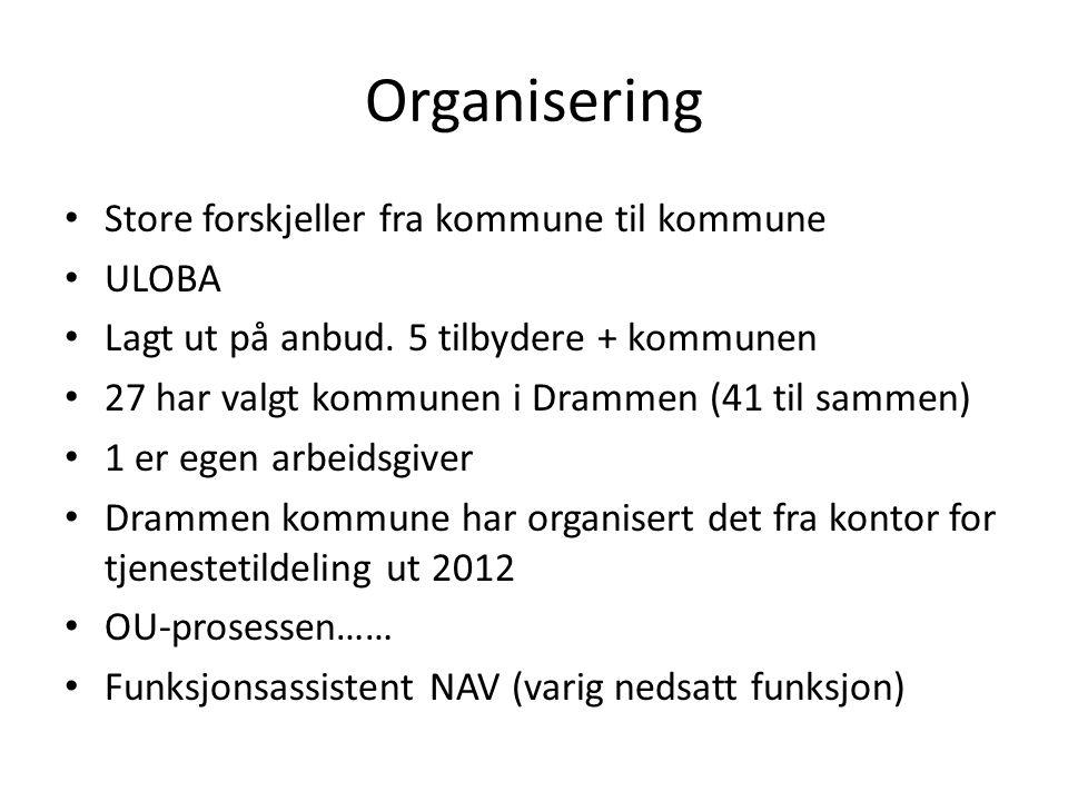 Organisering Store forskjeller fra kommune til kommune ULOBA Lagt ut på anbud. 5 tilbydere + kommunen 27 har valgt kommunen i Drammen (41 til sammen)
