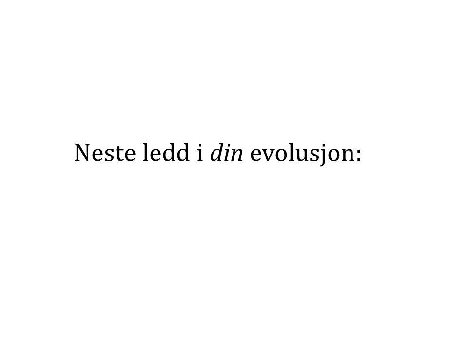 Neste ledd i din evolusjon: