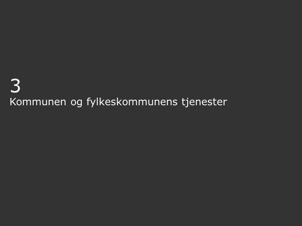 3 Kommunen og fylkeskommunens tjenester