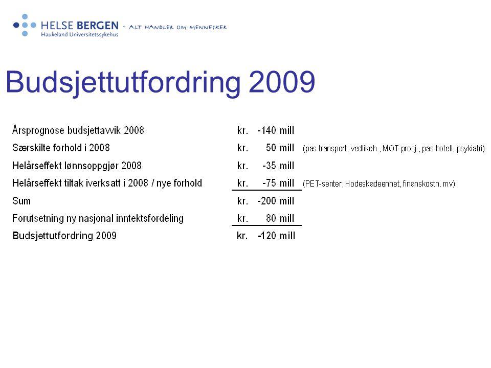Budsjettutfordring 2009