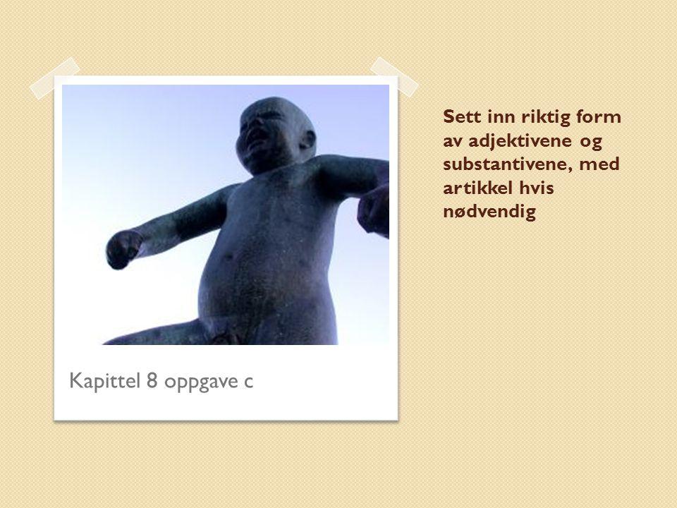 Sett inn riktig form av adjektivene og substantivene, med artikkel hvis nødvendig Kapittel 8 oppgave c