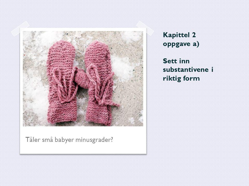 Kapittel 2 oppgave a) Sett inn substantivene i riktig form Tåler små babyer minusgrader?