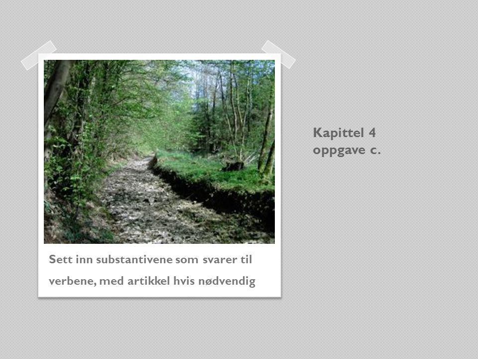 Kapittel 4 oppgave c. Sett inn substantivene som svarer til verbene, med artikkel hvis nødvendig