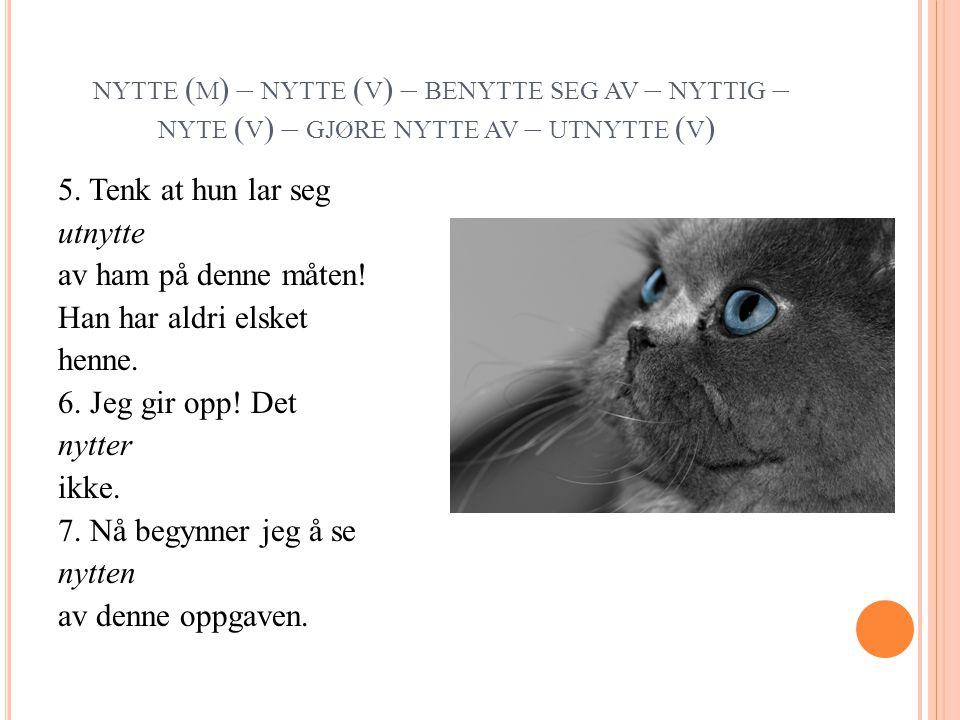 NYTTE ( M ) – NYTTE ( V ) – BENYTTE SEG AV – NYTTIG – NYTE ( V ) – GJØRE NYTTE AV – UTNYTTE ( V ) 5.