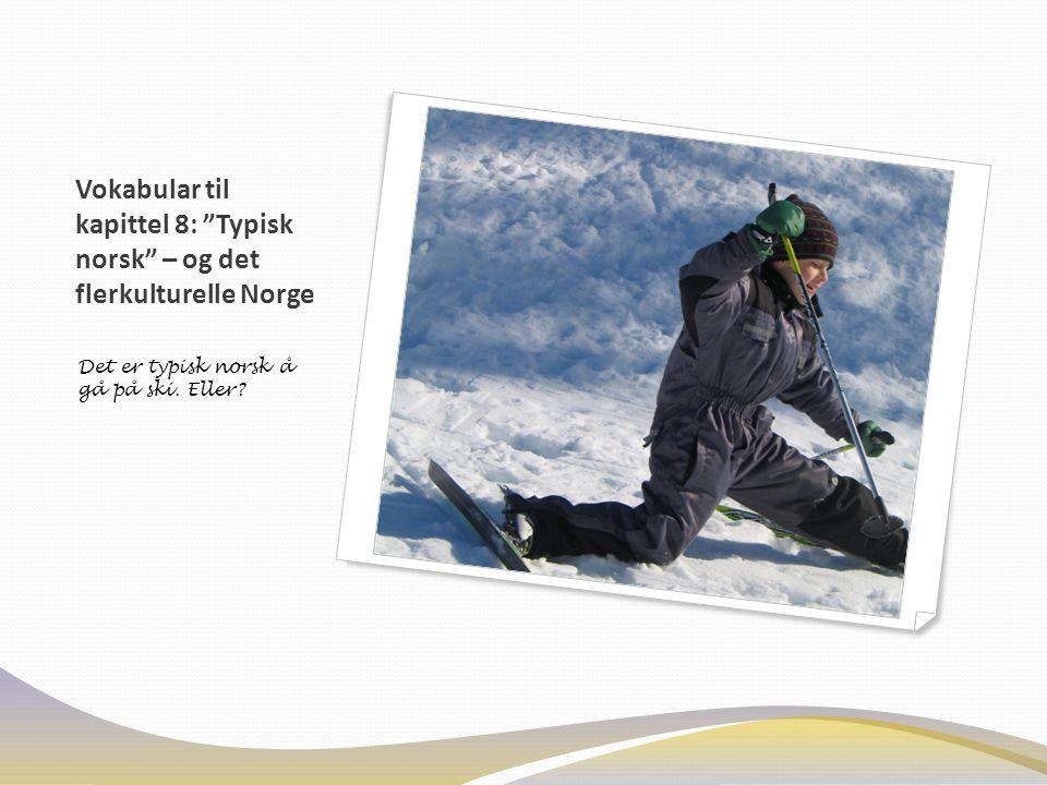 "Vokabular til kapittel 8: ""Typisk norsk"" – og det flerkulturelle Norge Det er typisk norsk å gå på ski. Eller?"
