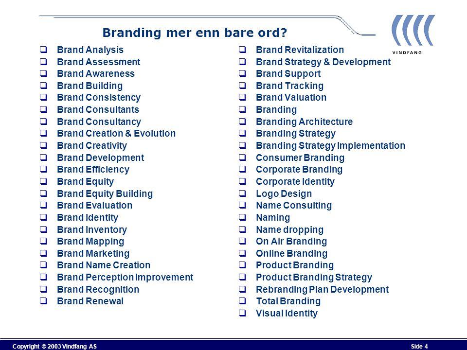 Copyright © 2003 Vindfang AS Side 15 Resultat av prioriterte verdier Stavanger-regionen skal være kjent for følgende egenskaper:  Innovative (kreative)  Energiske  Kulturelle  felles for de prioriterte verdier er å skape (create, create business)