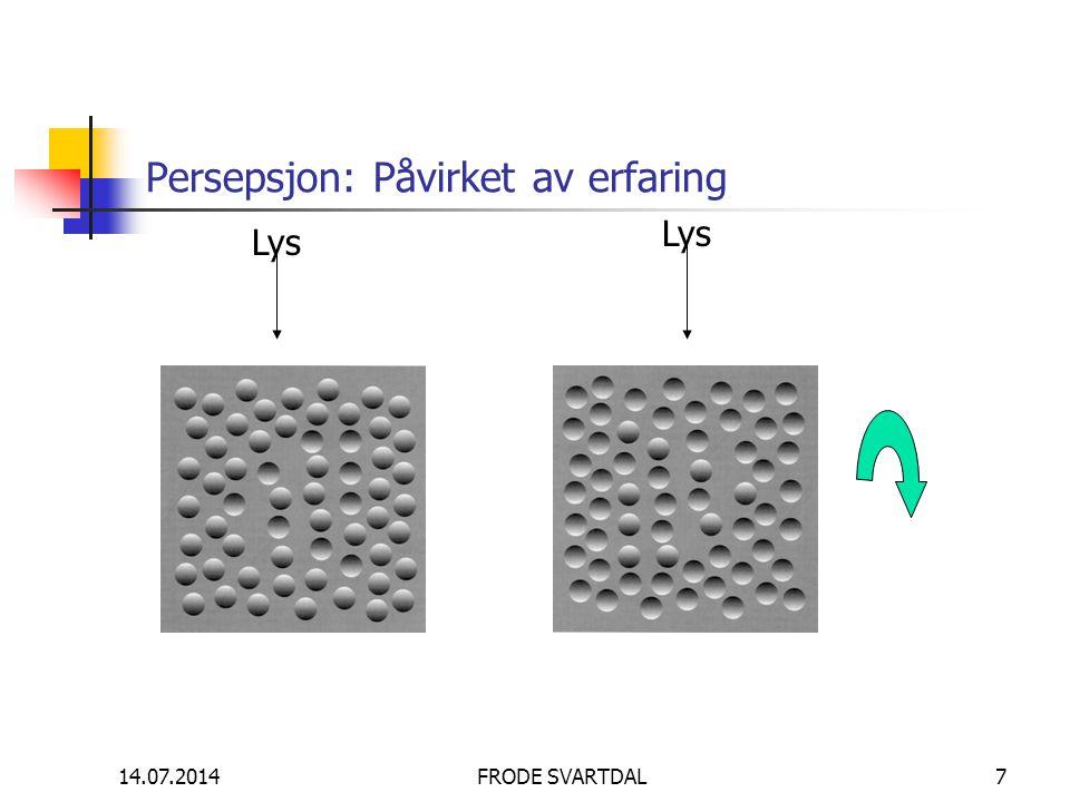 14.07.2014FRODE SVARTDAL7 Persepsjon: Påvirket av erfaring Lys