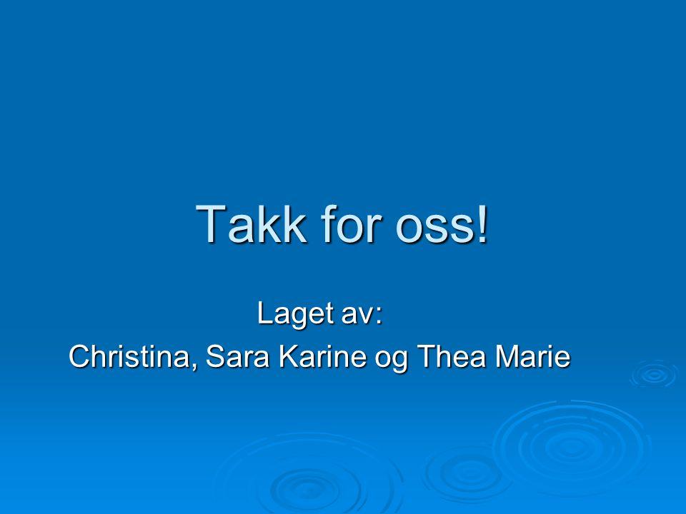 Takk for oss! Laget av: Christina, Sara Karine og Thea Marie