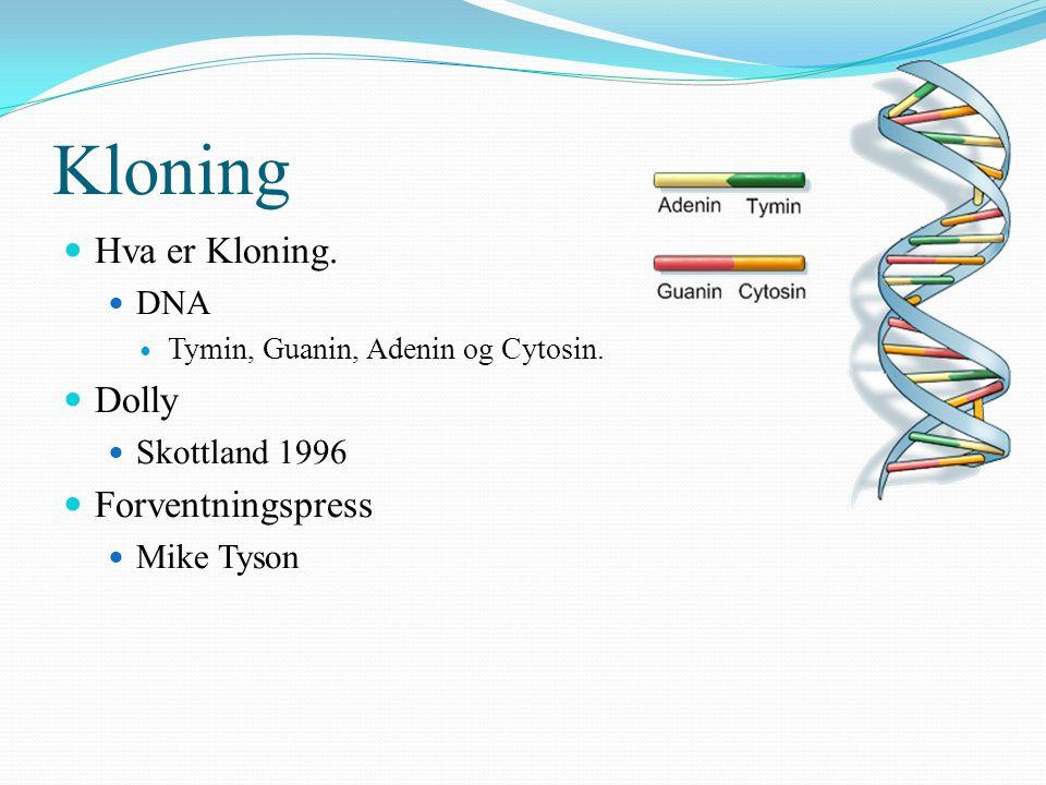 Kloning Hva er Kloning. DNA Tymin, Guanin, Adenin og Cytosin. Dolly Skottland 1996 Forventningspress Mike Tyson