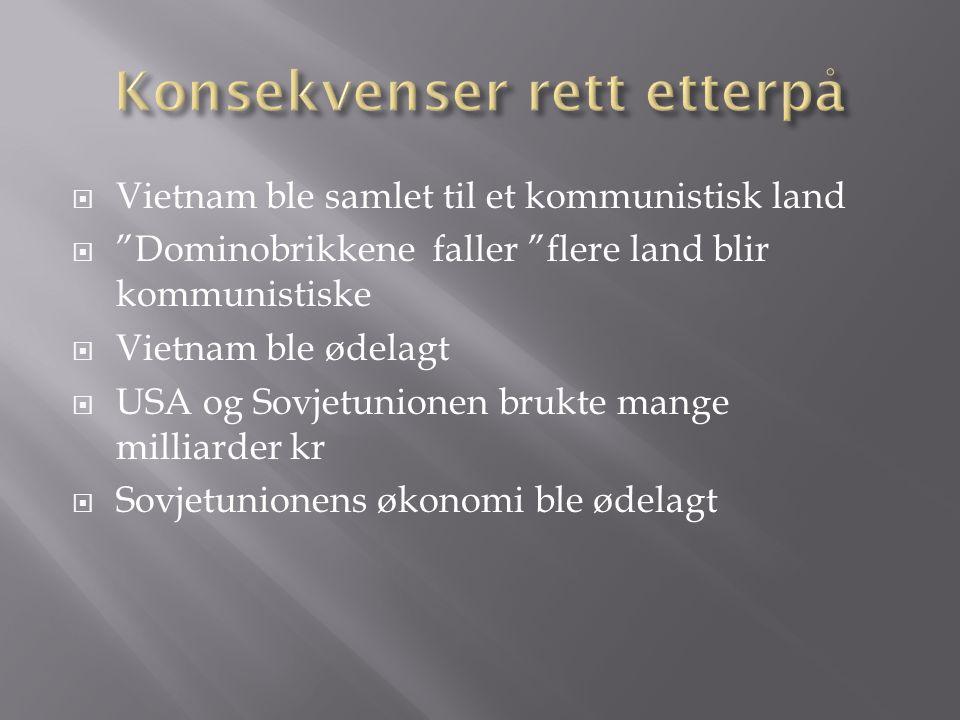 """ Vietnam ble samlet til et kommunistisk land  """"Dominobrikkene faller """"flere land blir kommunistiske  Vietnam ble ødelagt  USA og Sovjetunionen bru"""
