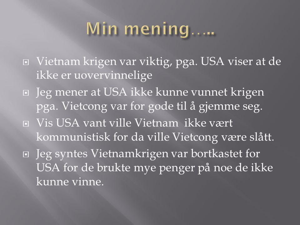  Vietnam krigen var viktig, pga. USA viser at de ikke er uovervinnelige  Jeg mener at USA ikke kunne vunnet krigen pga. Vietcong var for gode til å