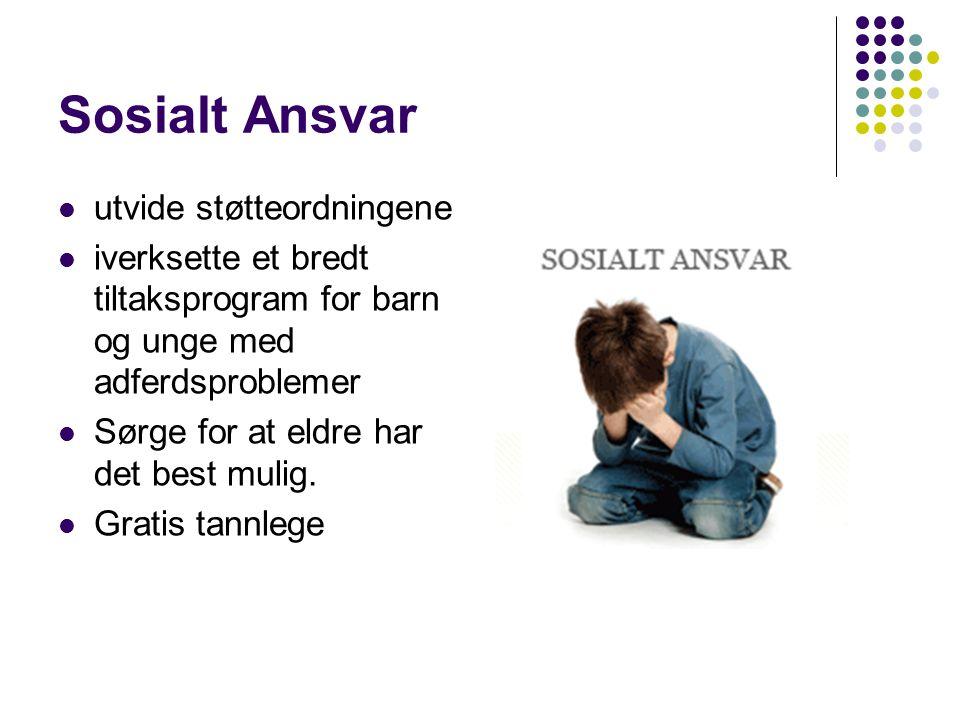 Sosialt Ansvar utvide støtteordningene iverksette et bredt tiltaksprogram for barn og unge med adferdsproblemer Sørge for at eldre har det best mulig.