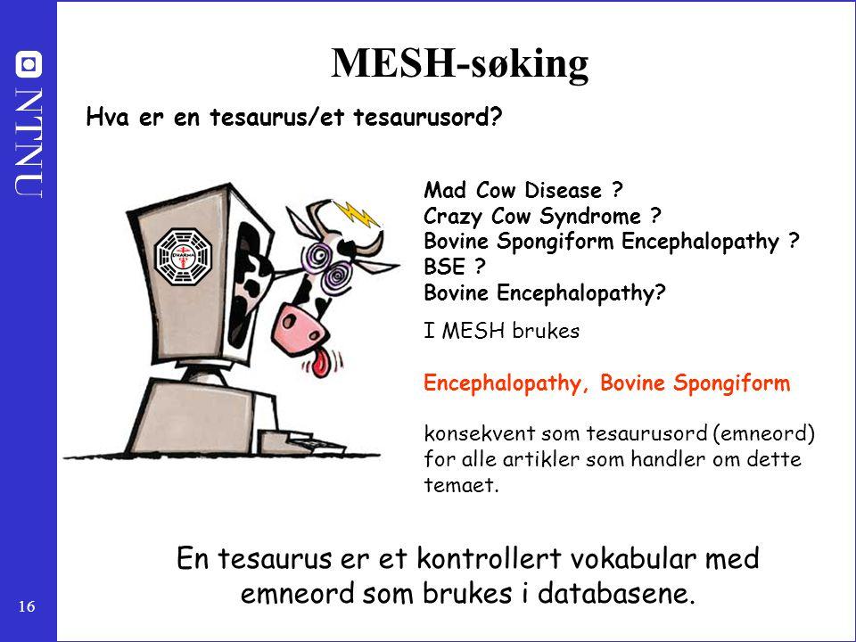 16 MESH-søking Hva er en tesaurus/et tesaurusord? Mad Cow Disease ? Crazy Cow Syndrome ? Bovine Spongiform Encephalopathy ? BSE ? Bovine Encephalopath