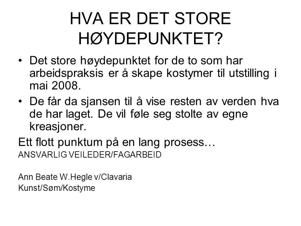 HVA ER DET STORE HØYDEPUNKTET.